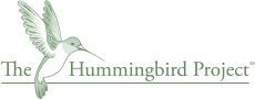 Hummingbird Therapeutic Activity Program
